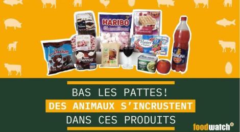 Des animaux cachés dans les yaourts, desserts, bonbons et sodas?